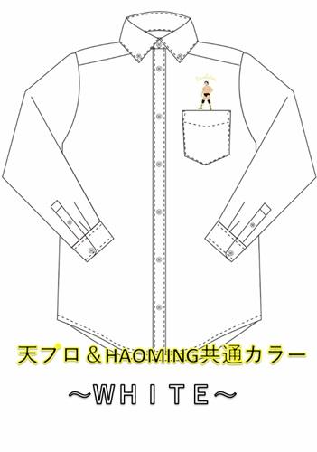 画像3: 天龍×ハオミン 刺繍ボタンダウンシャツ